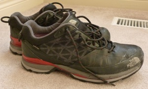 The North Face Havoc GTX Shoe