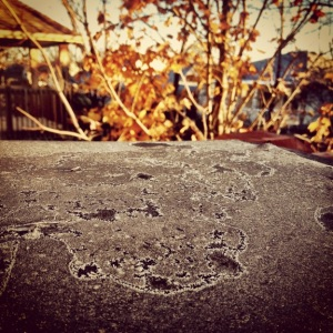 Frosty start to a beautiful fall morning