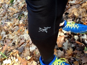 The Arc'teryx Stride Tight also excels in much softer conditions!