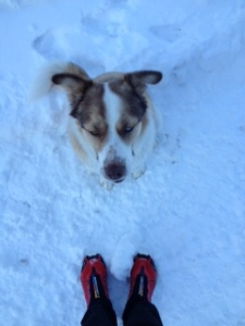 Pearl loved the Salomon Snowcross shoes!