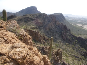 I wouldn't have seen this view in Tucson, AZ if I hadn't run to it!
